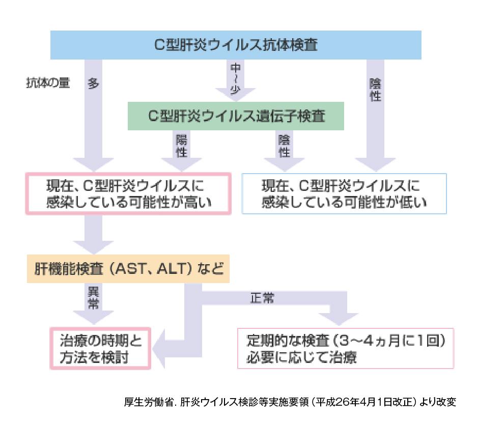 (図)C型慢性肝炎の検査・診断の流れ
